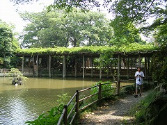 久伊豆神社(越谷市越ケ谷)